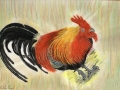Red Jungle Fowl Habitat:  Asia